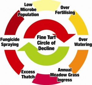 the Circle of Decline, the reason many greens never improve