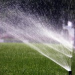 Irrigation, how much is enough?