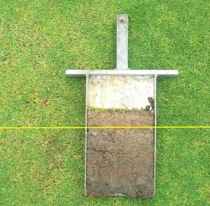 thatch builds up quickly on unhealthy greens