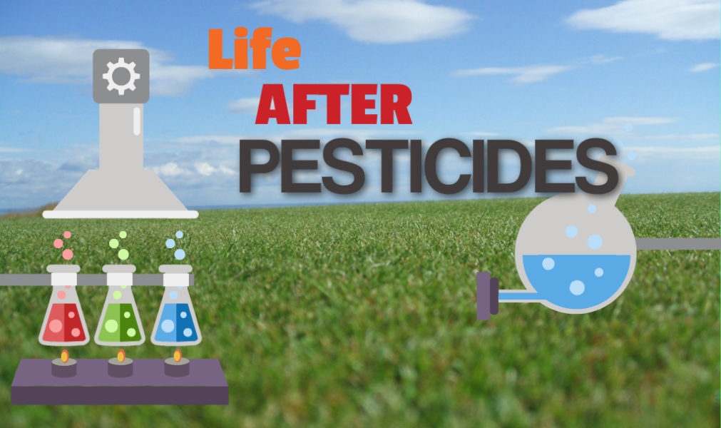 Bowling Green Ecology 1 Pesticides