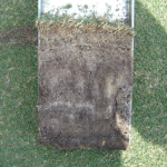 Distinct layers in soil profile