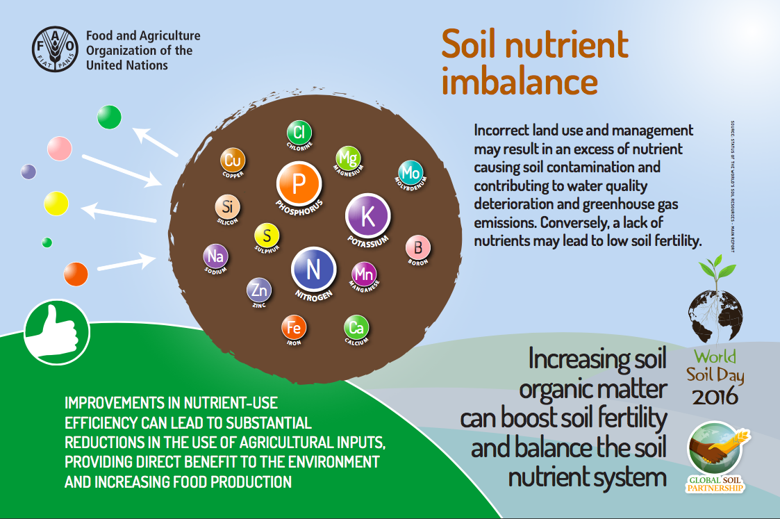 Soil Nutrient Imbalance