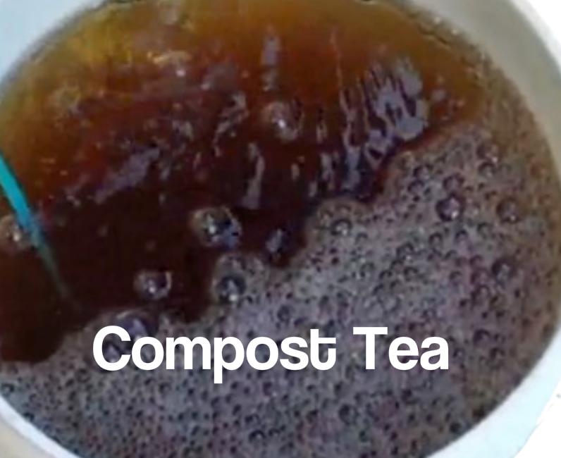Compost Teas