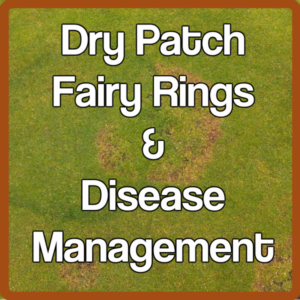 Dry Patch, Fairy Ring and Disease Management