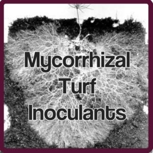 Mycorrhizal Turf Inoculants