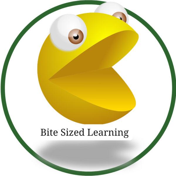 Bitesized learning