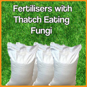Fertiliser with Thatch Eating Fungi
