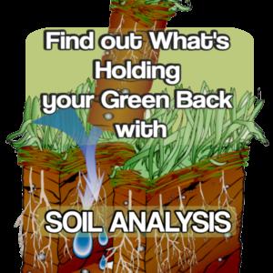 order soil analysis