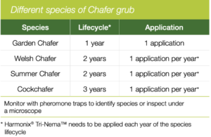 Chafer application rates