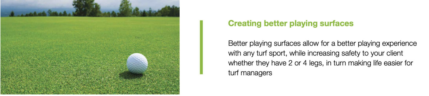 Turf Condition is all important